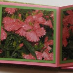 Maze Book Details 1